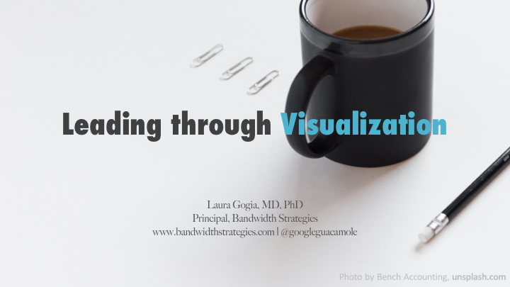 Leading through Visualization